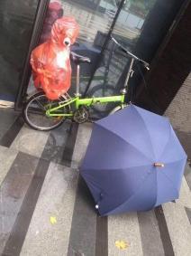 遛狗时下起了雨,主人为狗子做了个雨衣,把网友乐坏了