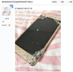 手机被萨摩耶咬碎,分期还没付完